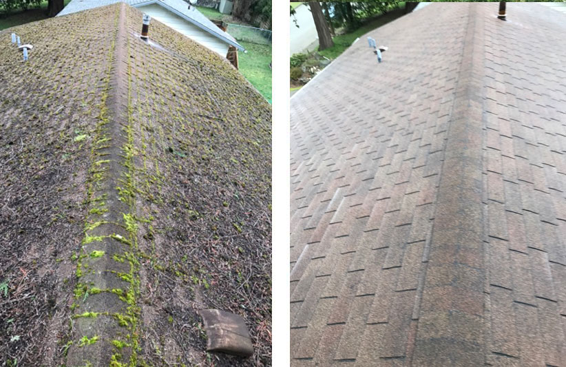 roof cleaning before and after in arlington