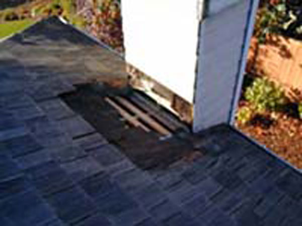 image of rotting roof shingles in bellevue